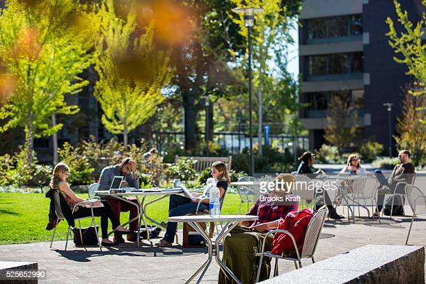 Students on campus at Harvard Law School a professional graduate schools of Harvard University located in Cambridge MA Established in 1817 Harvard...