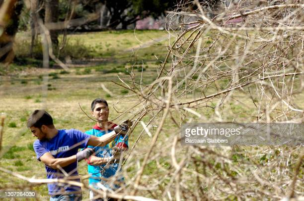 students opt for spring clean up during spring break - basslabbers, bastiaan slabbers stock pictures, royalty-free photos & images