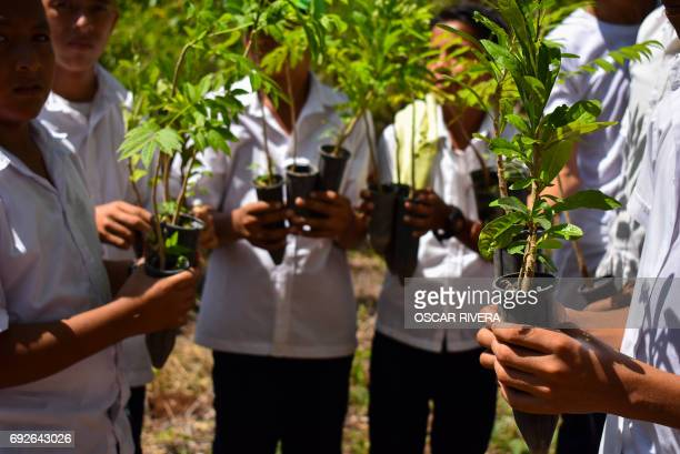Students participate in a national campaign for the reforestation of El Salvador at ecology park Walter Deininger in La Libertad 34 km south of San...
