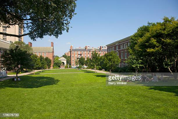students relaxing on grass on campus of brown university, providence, rhode island - brown university stock pictures, royalty-free photos & images