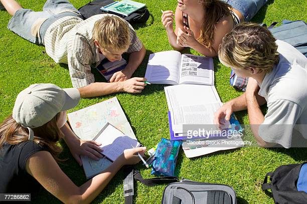 Students studying outdoors in grass
