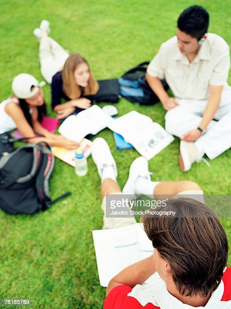 Students studying outdoors together