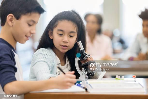 students work on assignment together during science class - aluna da escola secundária imagens e fotografias de stock