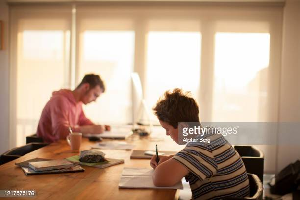 students working from home on computer during lockdown - homeschool stock pictures, royalty-free photos & images