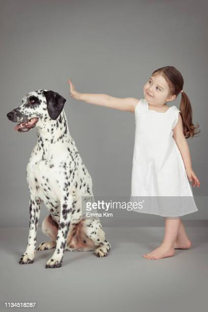 studio portrait of female toddler and dalmatian dog - hairy girl stock pictures, royalty-free photos & images
