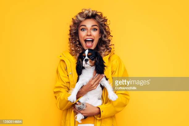 studio portrait of smiling young woman holding affectionate pet - pet owner stock pictures, royalty-free photos & images