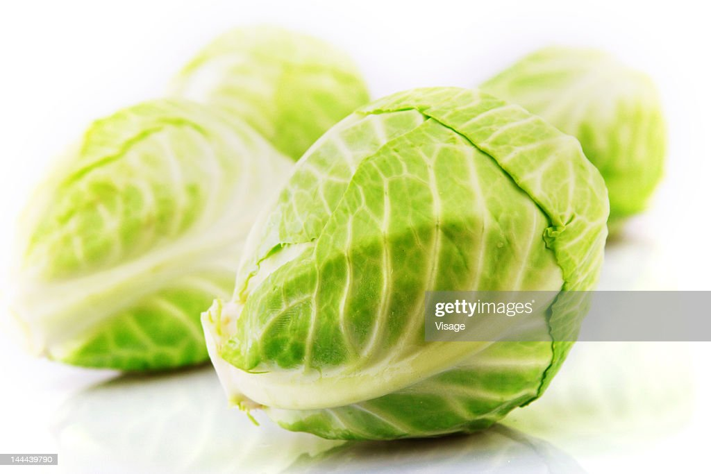 Studio shot of a Cabbage : Stock Photo