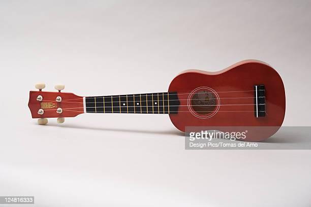 studio shot of an ukulele laying on a white background. - ukulele stock pictures, royalty-free photos & images