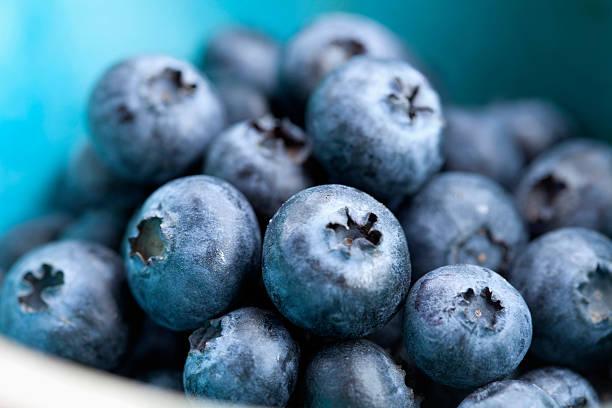 studio shot of blueberries - 藍莓 個照片及圖片檔