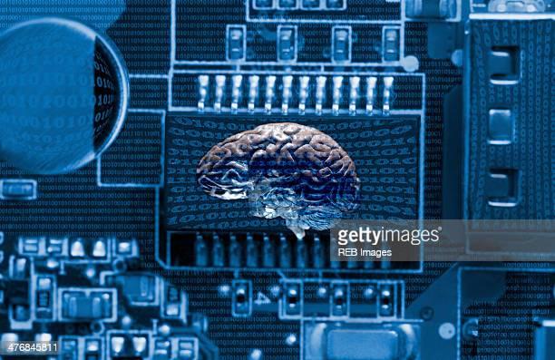 Studio shot of brain and data technology