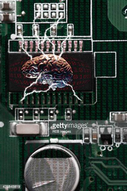 Studio shot of brain connected to data technology