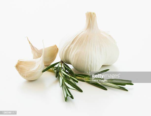 studio shot of fresh garlic and rosemary - garlic clove imagens e fotografias de stock