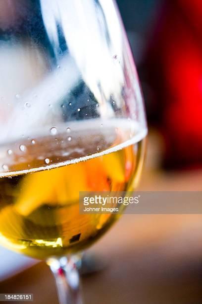 Studio shot of glass of beer
