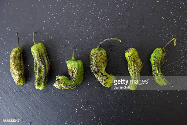 studio shot of grilled shishito peppers - tapas stock photos and pictures