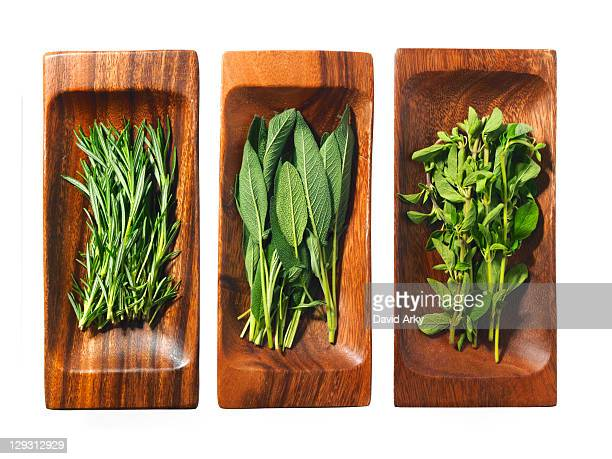 Studio shot of herbs on wooden trays