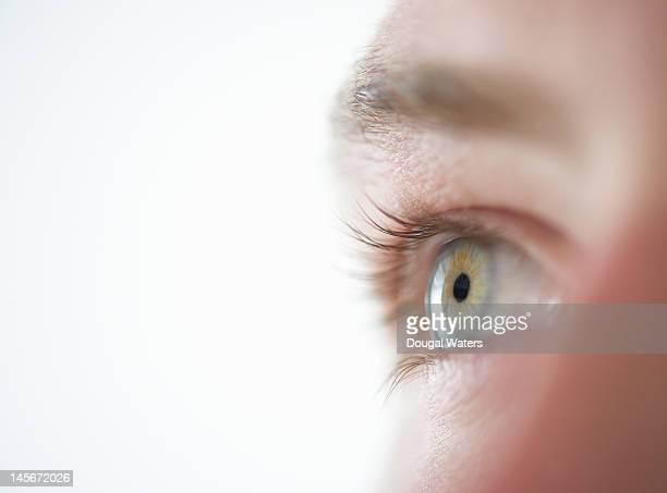 studio shot of male eye close up. - oeil humain photos et images de collection