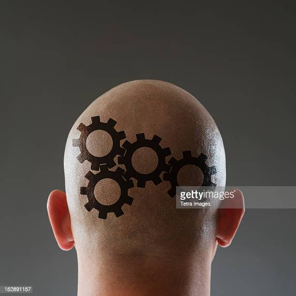 Studio shot of man's shaved head