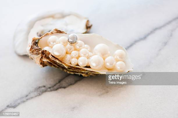 Studio shot of pearls in oyster