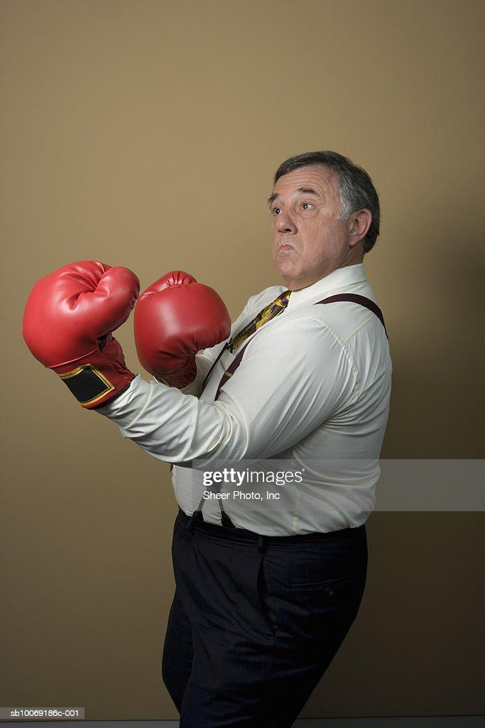 Studio shot of senior businessman wearing boxing gloves : Stockfoto
