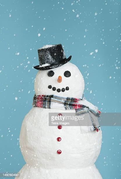 studio shot of snowman - bonhomme de neige photos et images de collection
