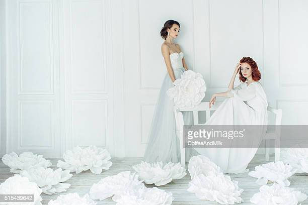 studio shot of two young beautiful brides - wedding dress stock pictures, royalty-free photos & images