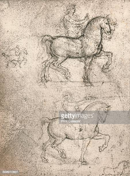 Study for the Sforza Monument c1482c1499 From The Literary Works of Leonardo Da Vinci Vol II by Jean Paul Richter PH DR [Sampson Low Marston Searle...
