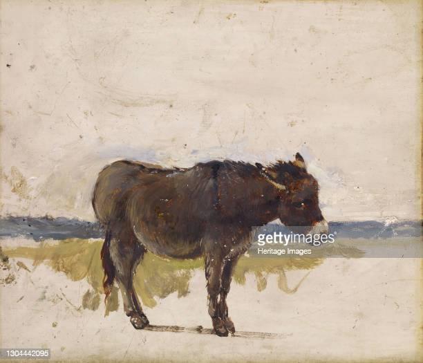 Study of a Donkey, 1841-1843. Artist David Cox the elder.