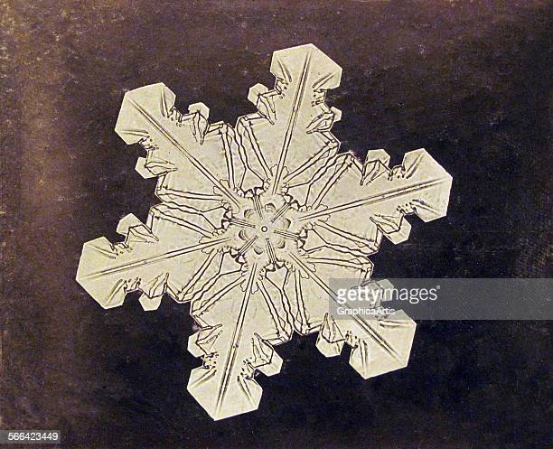 Study of a snowflake by Wilson A 'Snowflake' Bentley albumen print from a glassplate photograph 1890