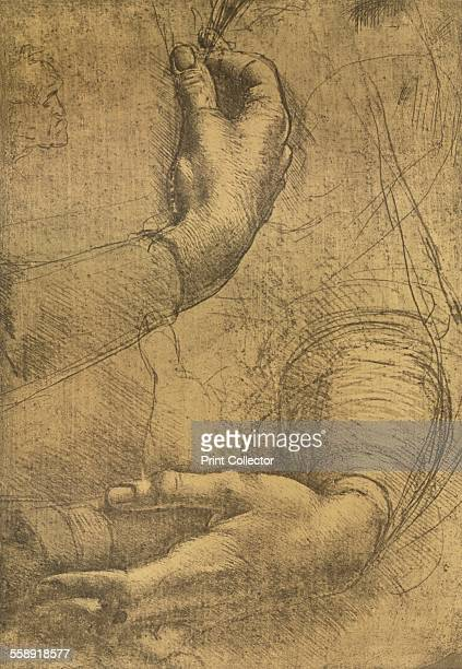 Study of female hands drawn with the silverpoint on yellowish tinted paper heightened with white c1472c1519 From The Literary Works of Leonardo Da...