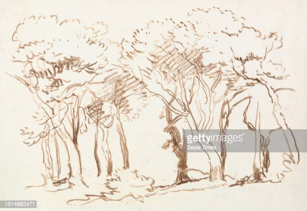 Study of Trees, Follower of David Cox, 1783–1859, British, formerly attributed to David Cox, 1783–1859, British, between 1840 and 1849, Brown crayon...