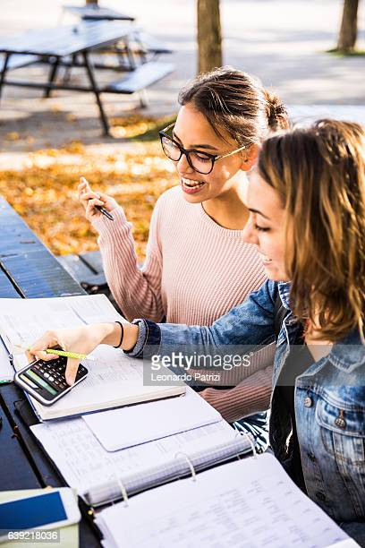 studying math with classmate outdoor at city park - fun calculator stock photos and pictures