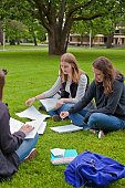 three college friends study outside
