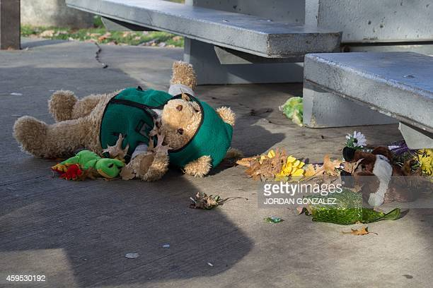 A stuffed animal lays on the ground at the Cudell Commons Park in Cleveland Ohio November 24 2014 after extreme wind blew the teddy bear from a...