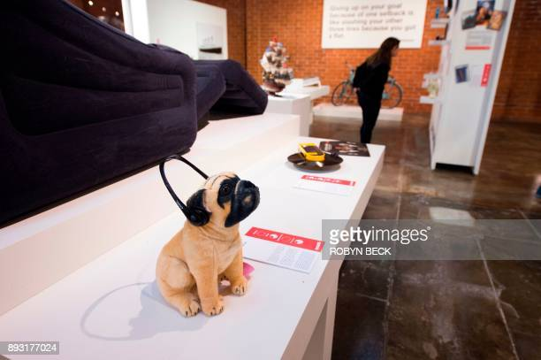 A stuffed animal wears 'No More Woof' a crowdfunded wearable gadget that strapped to a dog's head and purported to translate a dog's brainwaves into...