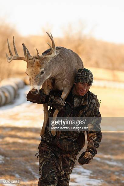stuffed deer being carried by photo assistant - dead deer stock photos and pictures