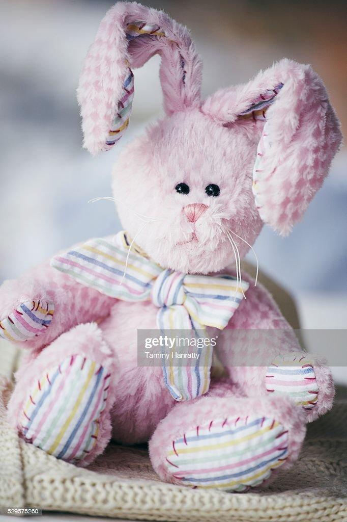 Stuffed Easter Bunny : Photo