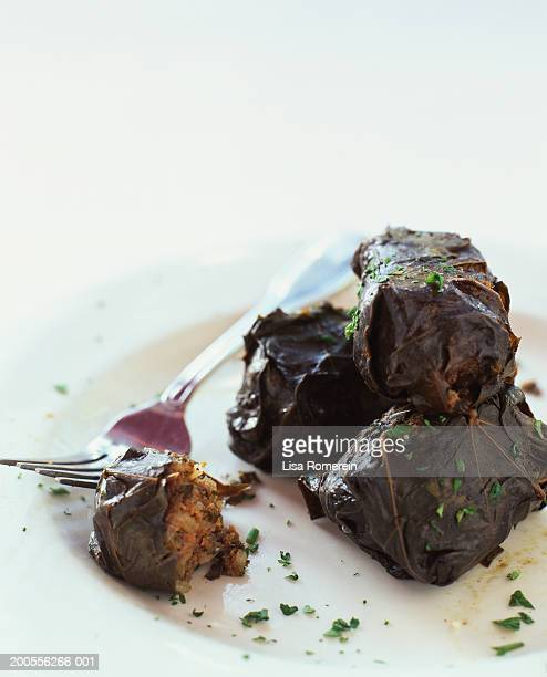 stuffed grape leaves on plate with fork, close-up - dolmades stock pictures, royalty-free photos & images