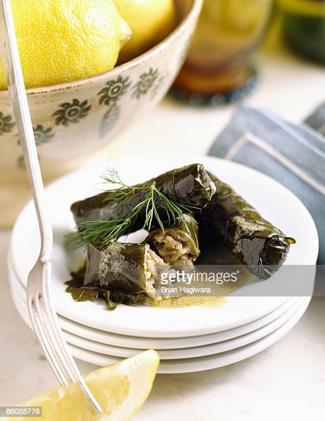stuffed grape leaves - dolmades stock pictures, royalty-free photos & images