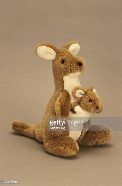 stuffed kangaroos - soft toy stock pictures, royalty-free photos & images