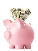 Stuffed piggy bank with US dollars