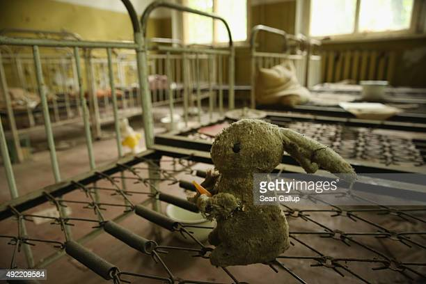 A stuffed rabbit doll sits among children's beds standing in the abandoned kindergarten of Kopachi village located inside the Chernobyl Exclusion...