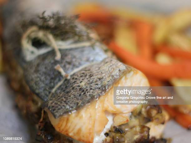 stuffed salmon - gregoria gregoriou crowe fine art and creative photography. stock pictures, royalty-free photos & images
