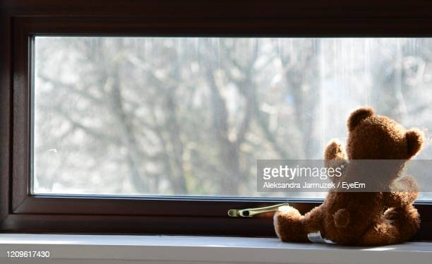 stuffed toy on window sill - window stock pictures, royalty-free photos & images