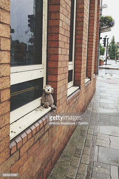 stuffed toy on window sill - kingston upon thames stock pictures, royalty-free photos & images