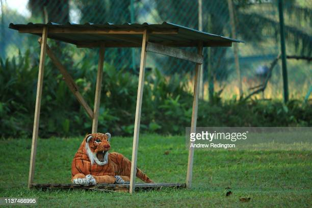 A stuffed toy tiger is seen on Day Two of the Maybank Championship at at Saujana Golf Country Club Palm Course on March 22 2019 in Kuala Lumpur...