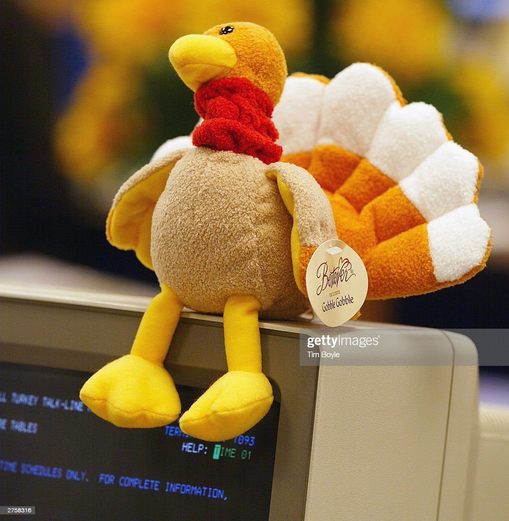 A stuffed toy turkey is visible atop 21-year-veteran Butterball Turkey Talk-Line home economist Jan Allen's computer monitor at the Butterball Turkey Talk-Line headquarters November 24, 2003 in Downers Grove, Illinois. The Butterball Talk-Line was created to assist everyone from first-time cooks to seasoned chefs with preparing their holiday bird. Originally staffed with six home economists who responded to 11,000 phone calls in its first year alone, today the Talk-Line is staffed with nearly 50 home economists and nutritionists who respond to more than 100,000 questions each November and December. ConAgra Foods opened the Butterball Turkey Talk-Line in 1981.