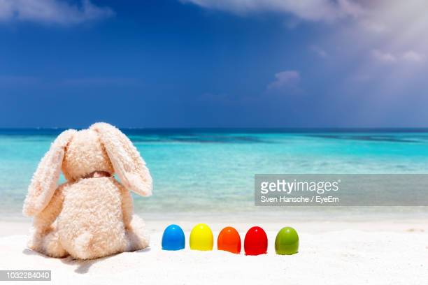 stuffed toys on beach against sky - easter beach stock pictures, royalty-free photos & images