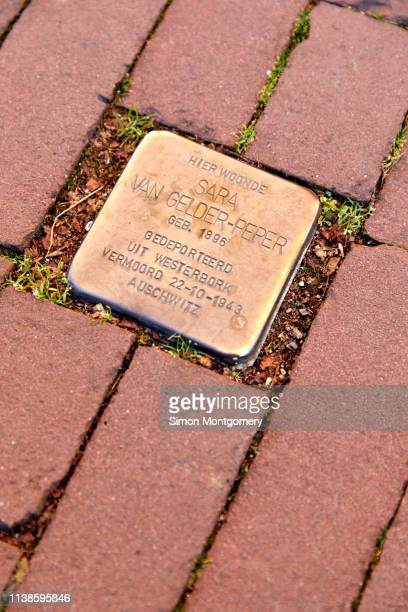 stumbling stones or stolpersteine are holocaust memorial are brass plaques placed in front of the victims last home, kloveniersburgwal in amsterdam - {{asset.href}} stock pictures, royalty-free photos & images