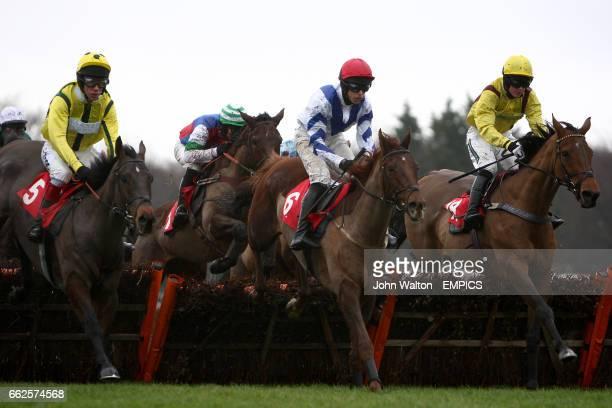 Stumped ridden by Mick Fitzgerald Tighten Your Belt ridden by Liam Treadwell Midas Way ridden by Dominic Elsworth and Mandingo Chief ridden by Gerrd...