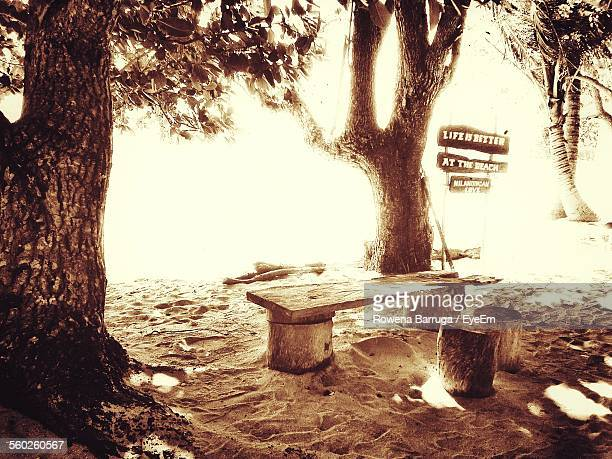 Stumps And Wooden Table On Beach